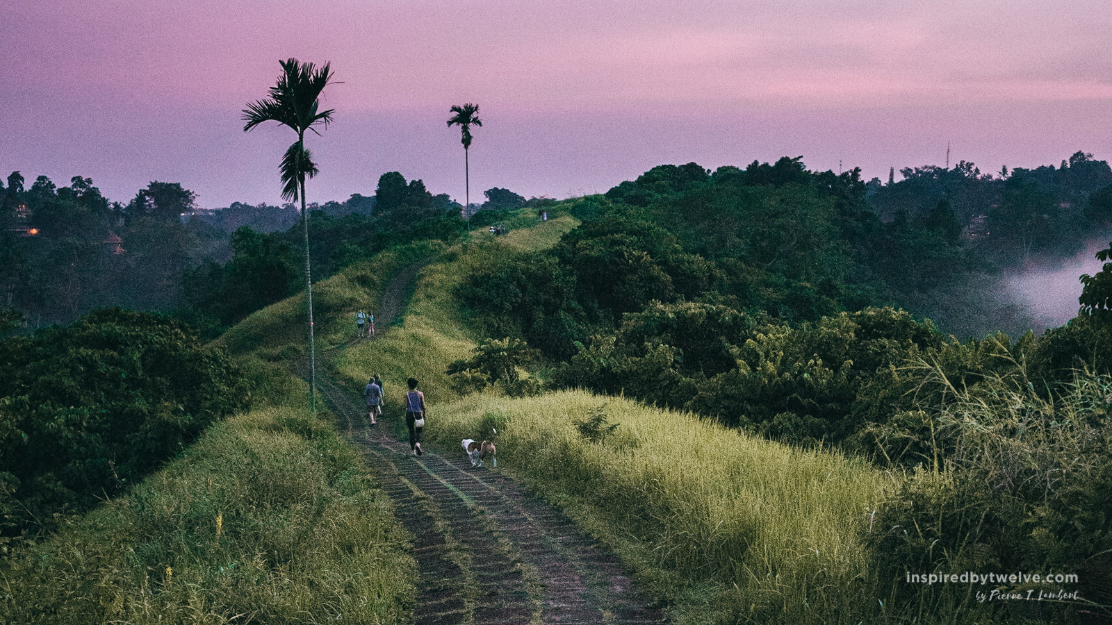 Top 7 Things To Do in Ubud, Bali